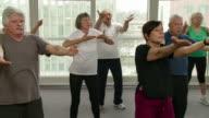 HD: Gruppe von Senioren Fitnesstraining mit Tai Chi