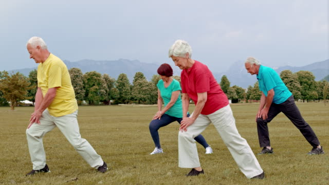 DS Group of seniors working out in the park
