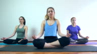 Group of women exercising yoga pose at the gym