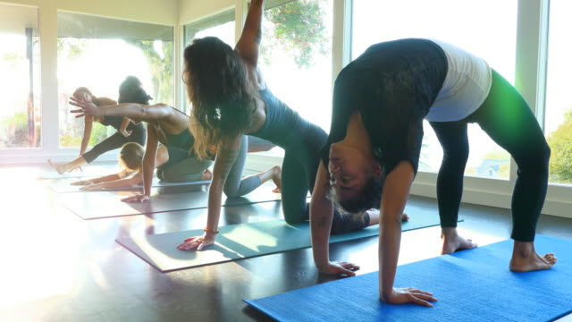 MS Group of women practicing varying yoga poses before class in studio