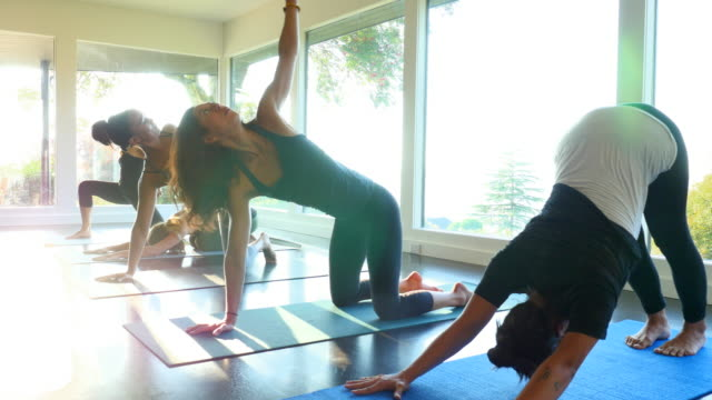 MS Group of women warming up practicing varying yoga poses before class in studio