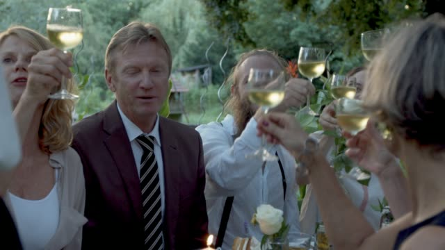 Guests toasting at wedding table