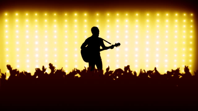 Guitarist on a concert stage