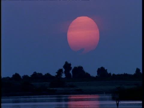 WA Gujarat, Indian fisherman wading out in to water, large pink sun setting in sky, Gujarat, India