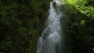A gushing waterfall cascades gracefully down a lush, green mountainside. Available in HD.