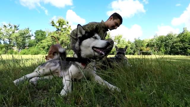 Mann spielt mit zwei Siberian Husky. Slow-Motion.