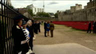 GVs Poppy installation / Duke and Duchess of Cambridge and Prince Harry open Tower of London installation More of William Kate and Harry chatting /...