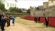 GVs Poppy installation / Duke and Duchess of Cambridge and Prince Harry open Tower of London installation GVs installation / William Kate and Harry...