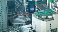 MS T/L Hachiko square pedestrian crossing seen from above in Shibuya district / Tokyo, Japan