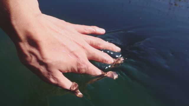 Hand playing with clear fresh water