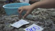 Hand take fresh prawn