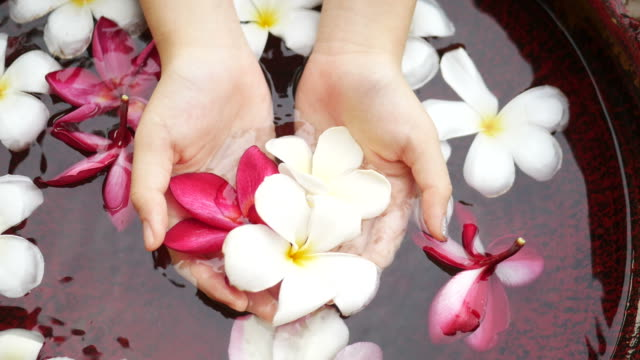 Hands carefully holding flowers