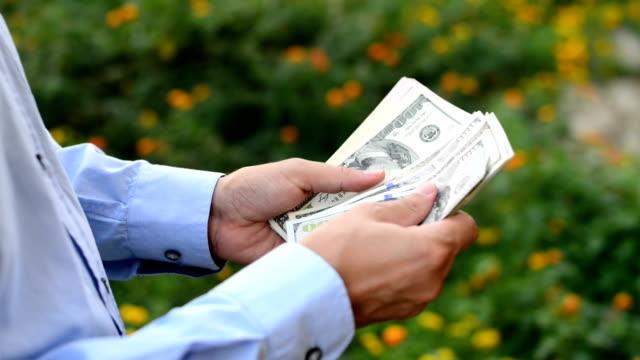Mani conteggio del denaro