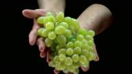 HD: Hands Holding Grape