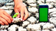 Hands plant green seed with smart phone