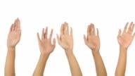 Le mani raccogliere
