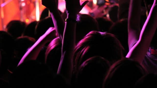 Hands Up. Rock concert crowd.