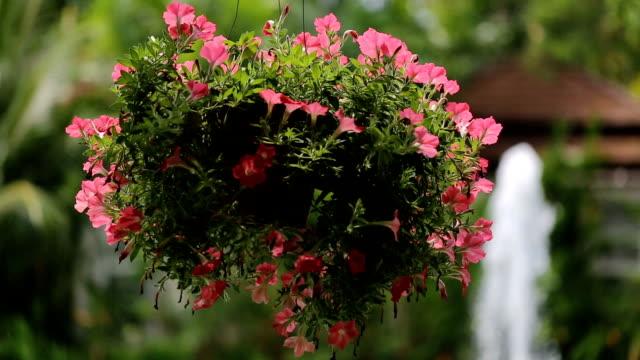 Hangende mand van bloemen.