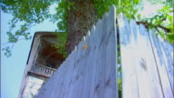 Hannibal, MissouriFence and Tree