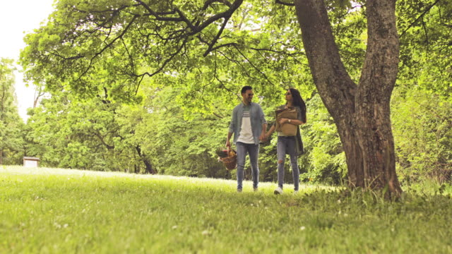 Happy couple holding hands while walking in nature and going on picnic.