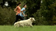 HD: Happy Couple Running With Their Dog