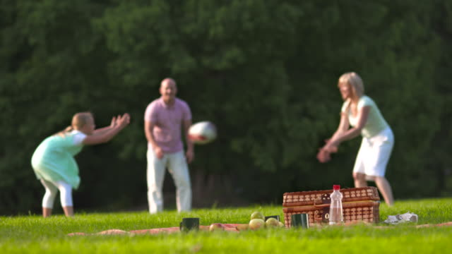 HD DOLLY: Happy Family Tossing A Ball In The Park