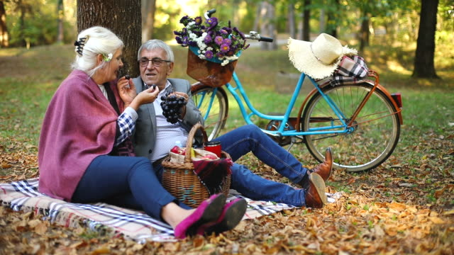 Happy mature couple having picnic