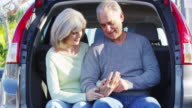 Happy senior couple holding hands in car
