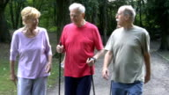 Happy senior friends holding hiking poles while walking in park