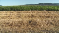 WS DS Harvested wheat field with corn fields and hills in background, Vrhnika, Slovenia