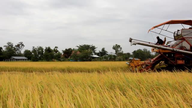 Harvesters, Combine Grain on farm