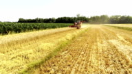 AERIAL Harvesting The Wheat