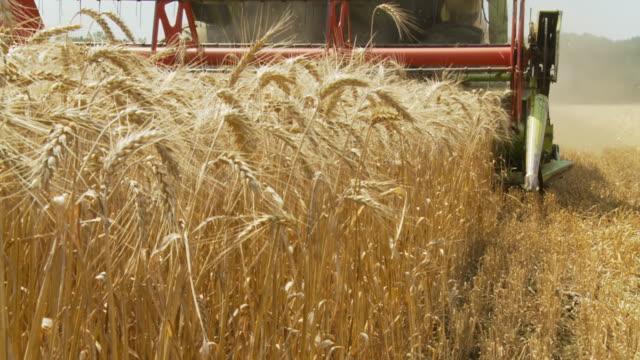 HD SLOW MOTION: Harvesting Wheat
