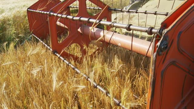 HD RALLENTATORE: Combinare raccolta grano con Mechanized