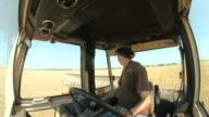Harvesting winter wheat