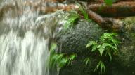 HD: saubere Wasserfall in der Natur.