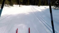 HD-Motion Effect: Wide Shot of Cross Country Skiing Action