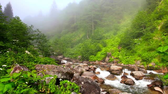 HD:Storm Creek, Storm Valley, **Firtina Vadisi**, Rize, TURKEY