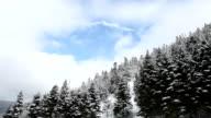 HD:Winter Landscape