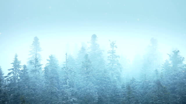 HD:Winter Landscape