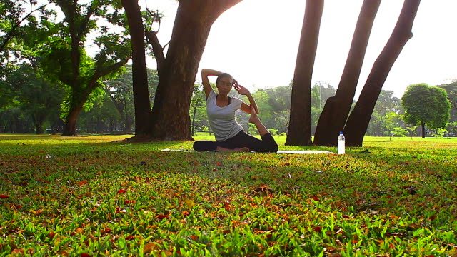 HD:Women practicing of yoga in the park.