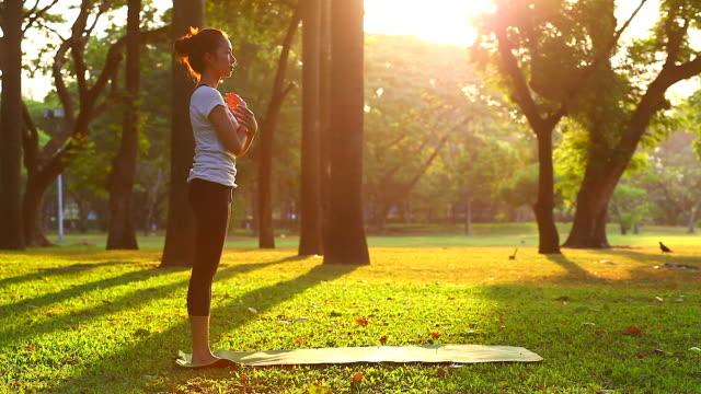 HD: Frauen Üben von yoga im Freien.