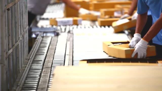 HD:Worker sorting carton box on conveyor rollers.