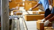 HD: Arbeiter Sortierung Kartonverpackung box auf der Förderanlage Lockenwicklern.