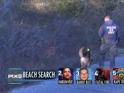 Head hands and forearm of Jessica Taylor found east of Gilgo Beach