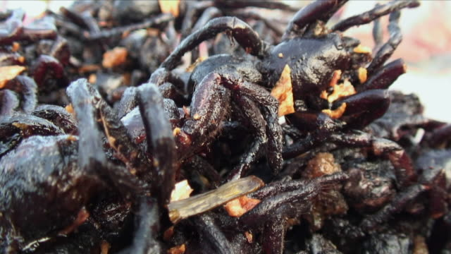 CU Heap of cooked spiders / Phnom Penh, Cambodia