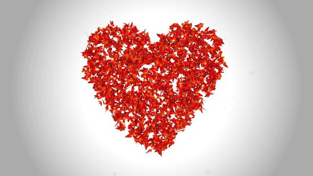 Simbolo cuore fatta da arancione farfalle-alfa