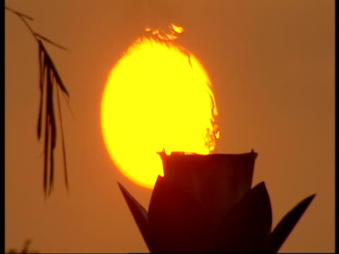 Heat waves from a small pot distort a view of the sun