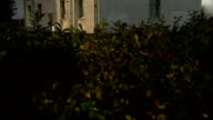 Hedges surround a modern housing unit in Tilbury, England. Available in HD.