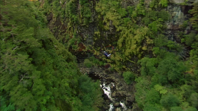 AIR TO AIR, Helicopter flying above forest and waterfall, Fiordland National Park, New Zealand